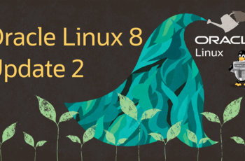 Oracle Linux 8.2 - imagine ISO disponibila public gnulinux.ro